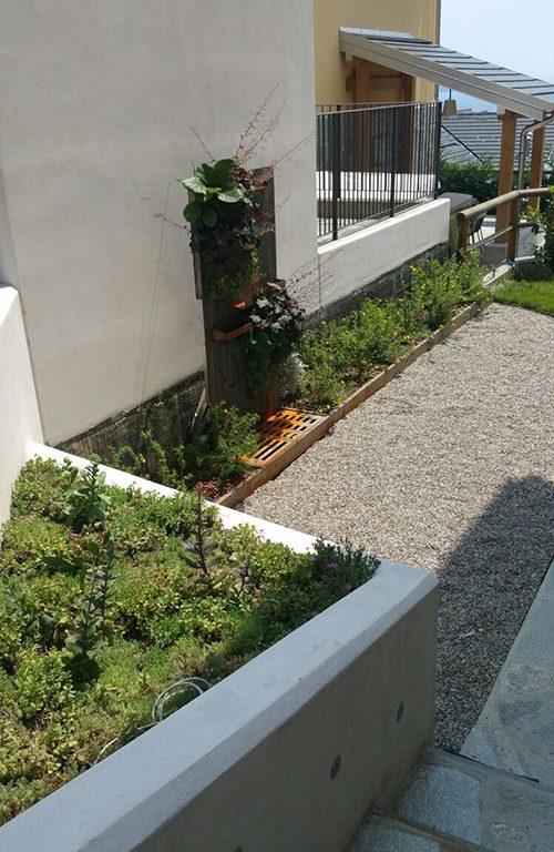 Una parete verde (5)