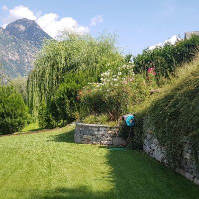 giardini e aiuole (3)