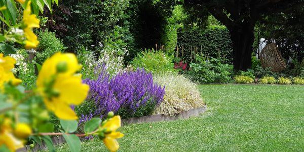 manutenzione e realizzazione giardini
