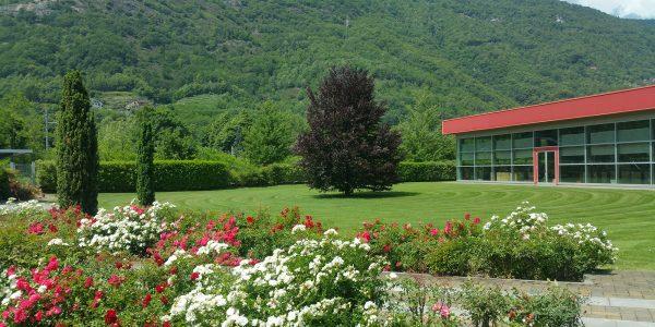 manutenzione verde aziendale ossola giardini