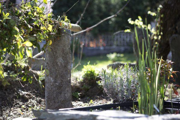 vivaio ossola giardini (15)